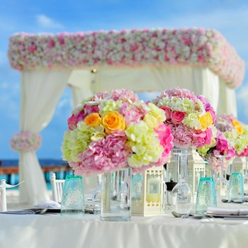 Flowers used for decoration