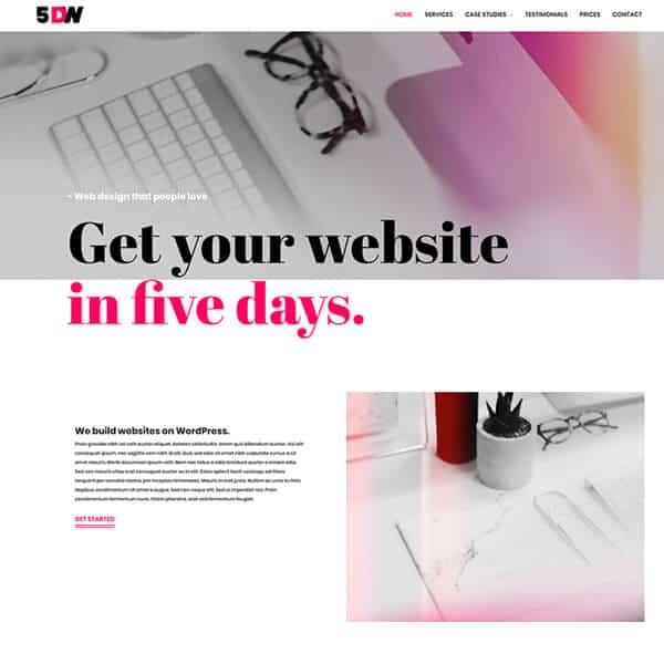5 day website WordPress demo site screenshot