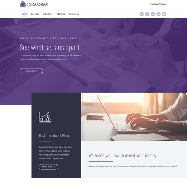 finance WordPress demo site screenshot