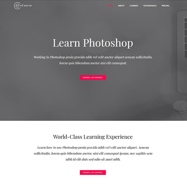 Learn Photoshop WordPress demo site screenshot