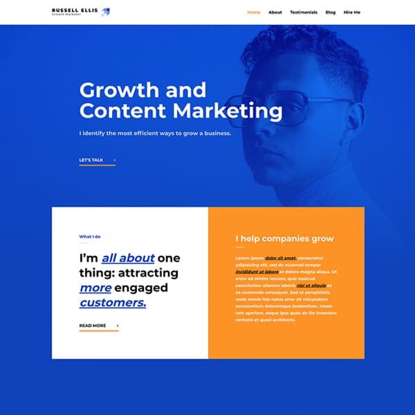 growth marketer WordPress demo site screenshot